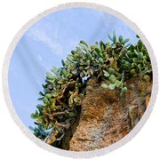 Cactus On A Cliff Round Beach Towel