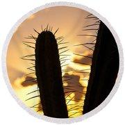 Cactus Sunset Round Beach Towel