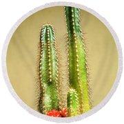 Cactus Towers Round Beach Towel