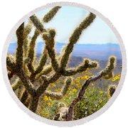 Cactus View Round Beach Towel