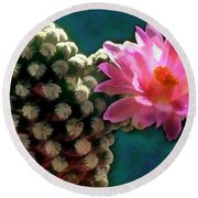 Cactus With Pink Sunlit Bloom Round Beach Towel