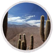 Cactus With The Andes Mountains Round Beach Towel