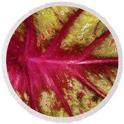 Caladium Leaf Round Beach Towel