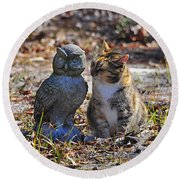 Calico Cat And Obtuse Owl Round Beach Towel by Al Powell Photography USA