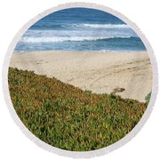 California Beach With Ice Plant Round Beach Towel by Carol Groenen