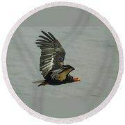 California Condor At Big Sur Round Beach Towel