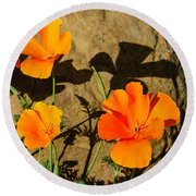 California Poppies - Crisp Shadows From The Desert Sun  Round Beach Towel
