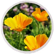 California Poppies In October Round Beach Towel