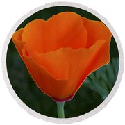 California Poppy Spectacular Round Beach Towel
