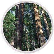 California Redwood Round Beach Towel