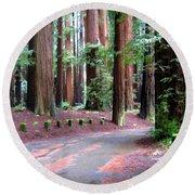 California Redwoods 3 Round Beach Towel