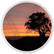 California Tree At Sunset Round Beach Towel