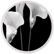 Calla Lilies In Triplicate In Black And White Round Beach Towel