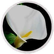 Calla Lily Spectacular Round Beach Towel