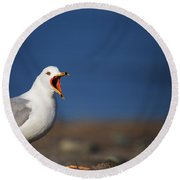 Calling All Gulls Round Beach Towel