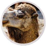 Camel Loose Lip Round Beach Towel