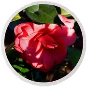 Camelia In The Shadows Round Beach Towel