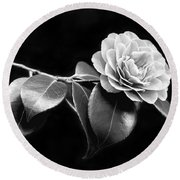 Camellia Flower In Black And White Round Beach Towel by Jennie Marie Schell
