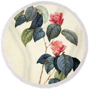 Camellia Japonica Round Beach Towel by Pierre Joseph Redoute