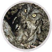 Camouflaged Screech Owl Round Beach Towel