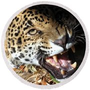 Can You Hear Me Now? Round Beach Towel