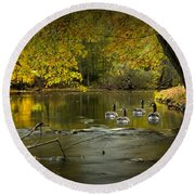 Canada Geese In Autumn Swimming On The Thornapple River Round Beach Towel