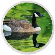 Canada Goose On Green Pond Round Beach Towel