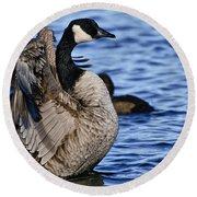Canada Goose Pictures 84 Round Beach Towel