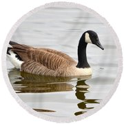 Canada Goose Reflecting In Calm Waters Round Beach Towel