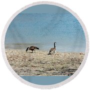 Canadian Geese 2 Round Beach Towel