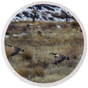 Canadian Geese In Flight Round Beach Towel