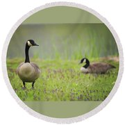 Canadian Geese Round Beach Towel
