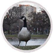 Canadian Goose At Boston Public Garden Round Beach Towel