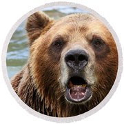 Canadian Grizzly Round Beach Towel