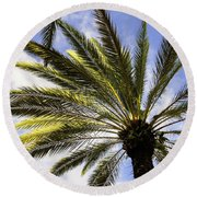 Canary Island Date Palm Round Beach Towel