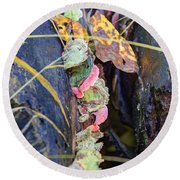 Candied Fungus Round Beach Towel