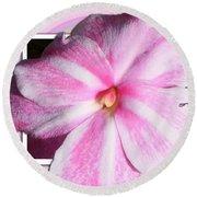 Candy Cane Flower Round Beach Towel