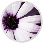 Cannington Roy Round Beach Towel