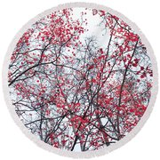 Canopy Trees Round Beach Towel
