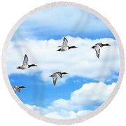 Canvasback Ducks In Flight Round Beach Towel