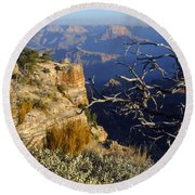 Canyon Foliage Round Beach Towel