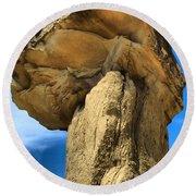 Caprock Mushroom Round Beach Towel