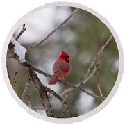 Cardinal - A Winter Bird Round Beach Towel