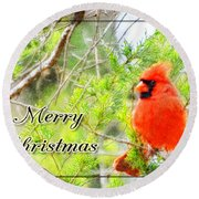 Cardinal Christas Card Round Beach Towel