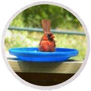 Cardinal Frisbee Round Beach Towel