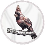 Cardinal Male Round Beach Towel