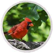 Cardinal Red Round Beach Towel