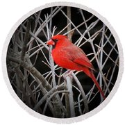 Cardinal Red With Black Round Beach Towel
