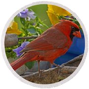 Cardinal With Pansies And Decorations Round Beach Towel