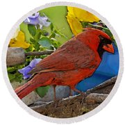 Cardinal With Pansies And Decorations Photoart Round Beach Towel